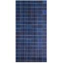 Panneau Solaire BlueSolar Polycrystallin